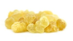 Frankincense in it's Resin form